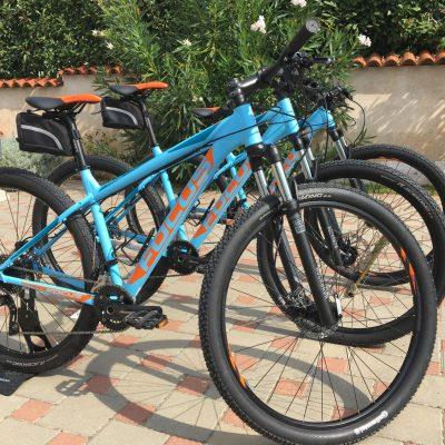 rent a bike fazana